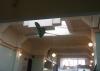 auch ne Idee zum Luftverwirbeln - ein Café in Napier