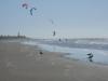 da geht's zu wie am Stachus! Jede Menge Kiter am Waekanae Beach