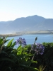 Blick vom Lake Ferry Hotel aus ueber den Lake Onoke