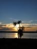 Sunset mit Blick vom Lake Ferry Hotel ueber die Cook Strait
