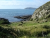 Blick bis nach Kapiti Island