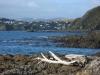Blick bis zu den Boatsheds in Titahy Bay